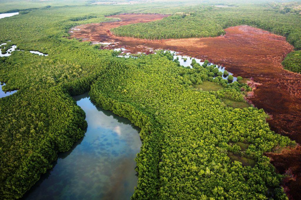 L1003218 - Guadeloupe Morne à l'eau