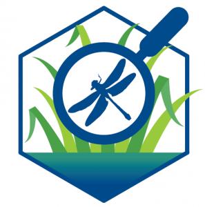 logo baladOmarais