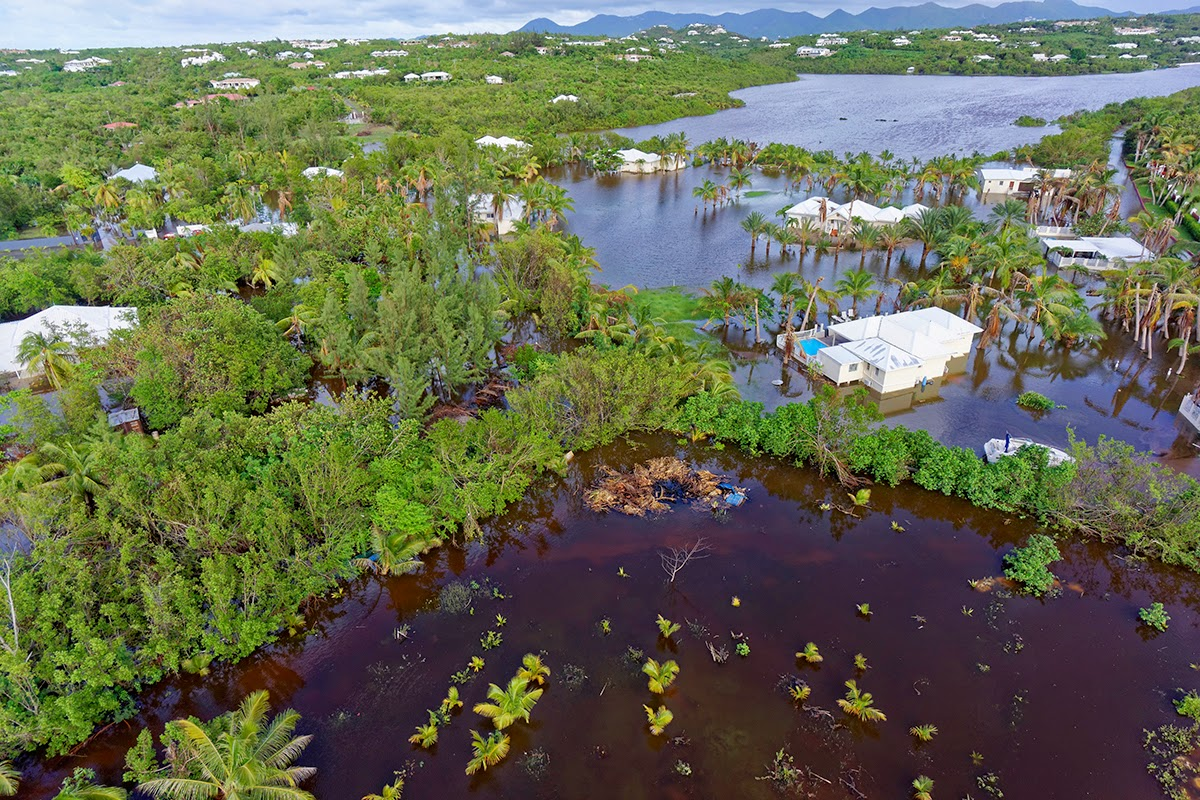 P le relais zones humides d 39 outre mer flooding of the for Small pond base