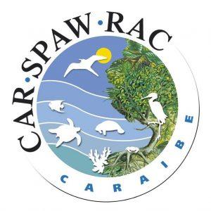 logo_car_spaw