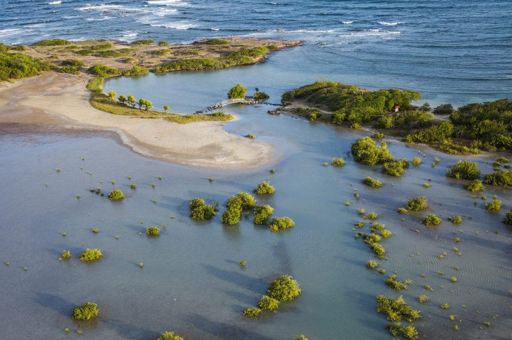 Martinique Etang des Salines Larrey