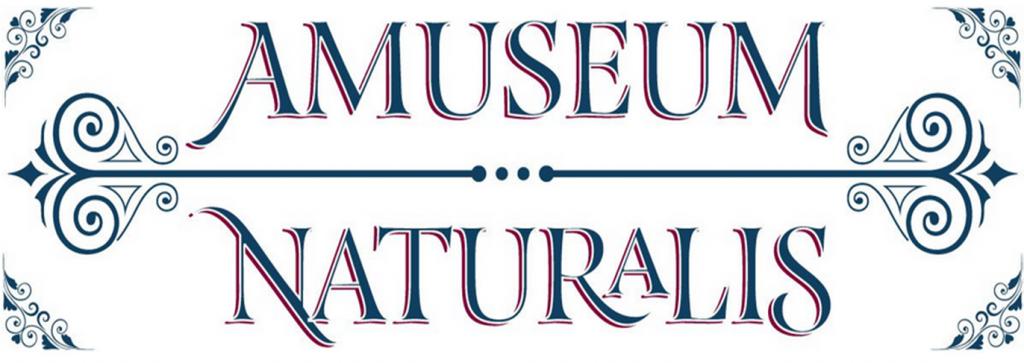 Amuseum Naturalis