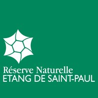 RNN saint-paul