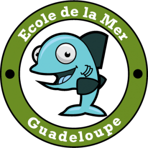 ecole_de_la_mer_guadeloupe