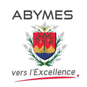 logo_abymes_-_vers_lexcellence