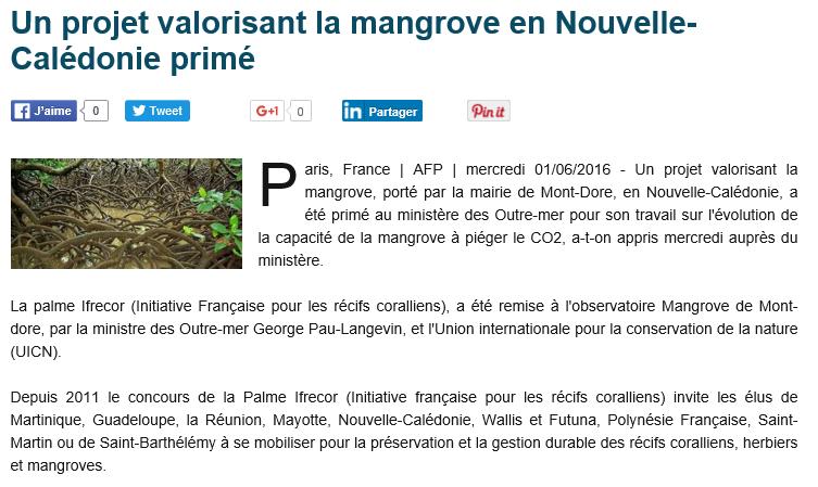 mangrove nc