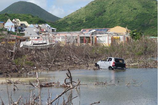 Autre type de macrodéchet dans l'étang de la Barrière © Antenne de Guadeloupe du Conservatoire du littoral